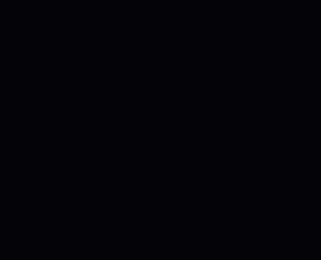 AluFixx Portatarga in alluminio anodizzato colore nero opaco